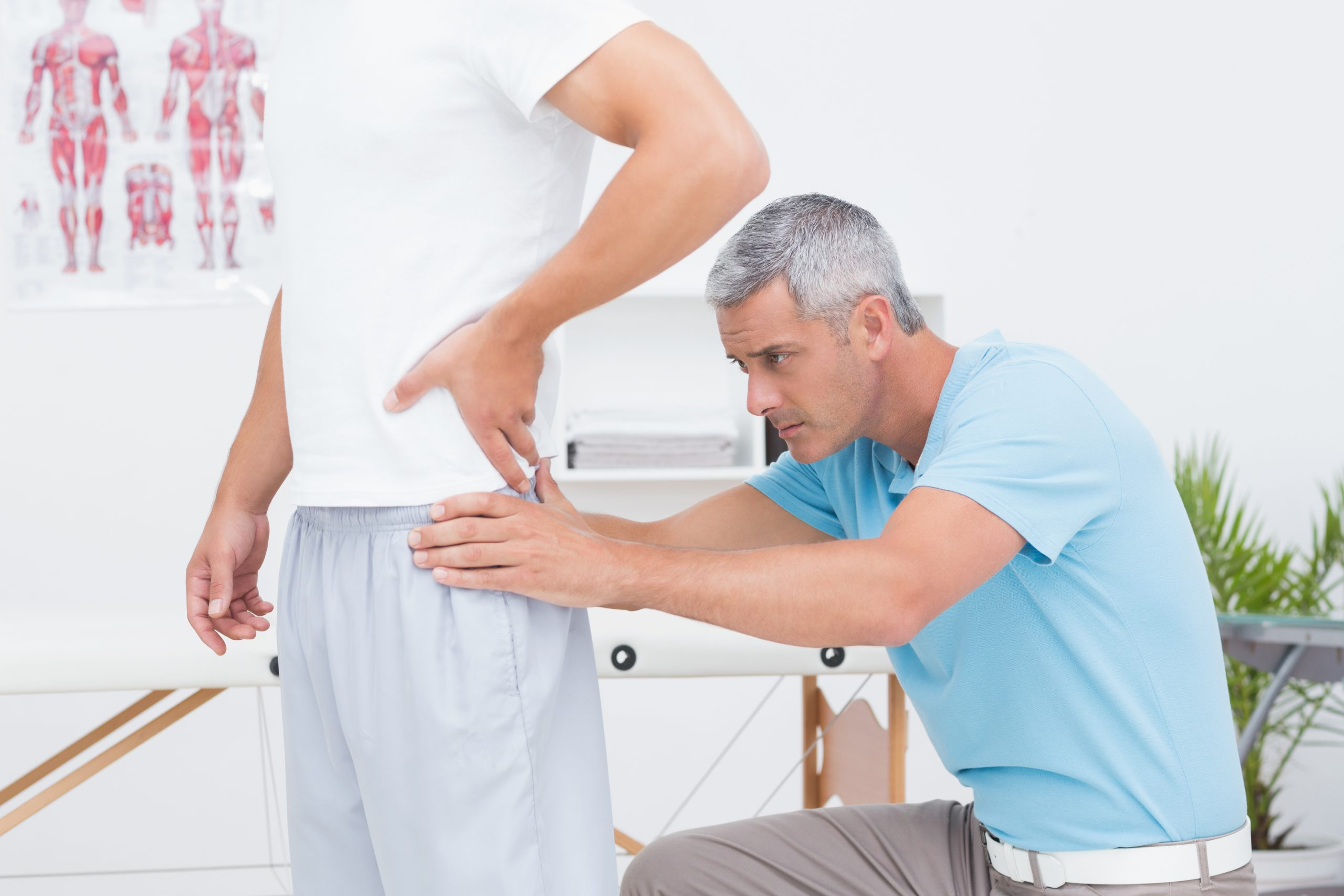 low back pain auckland